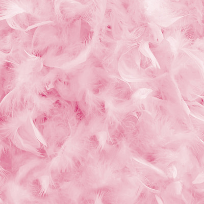 Printed Throw – Pink Feathers